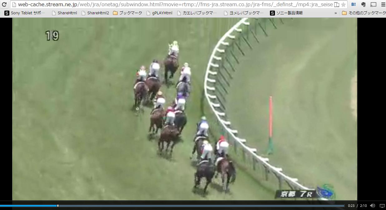 映像 競馬 レース